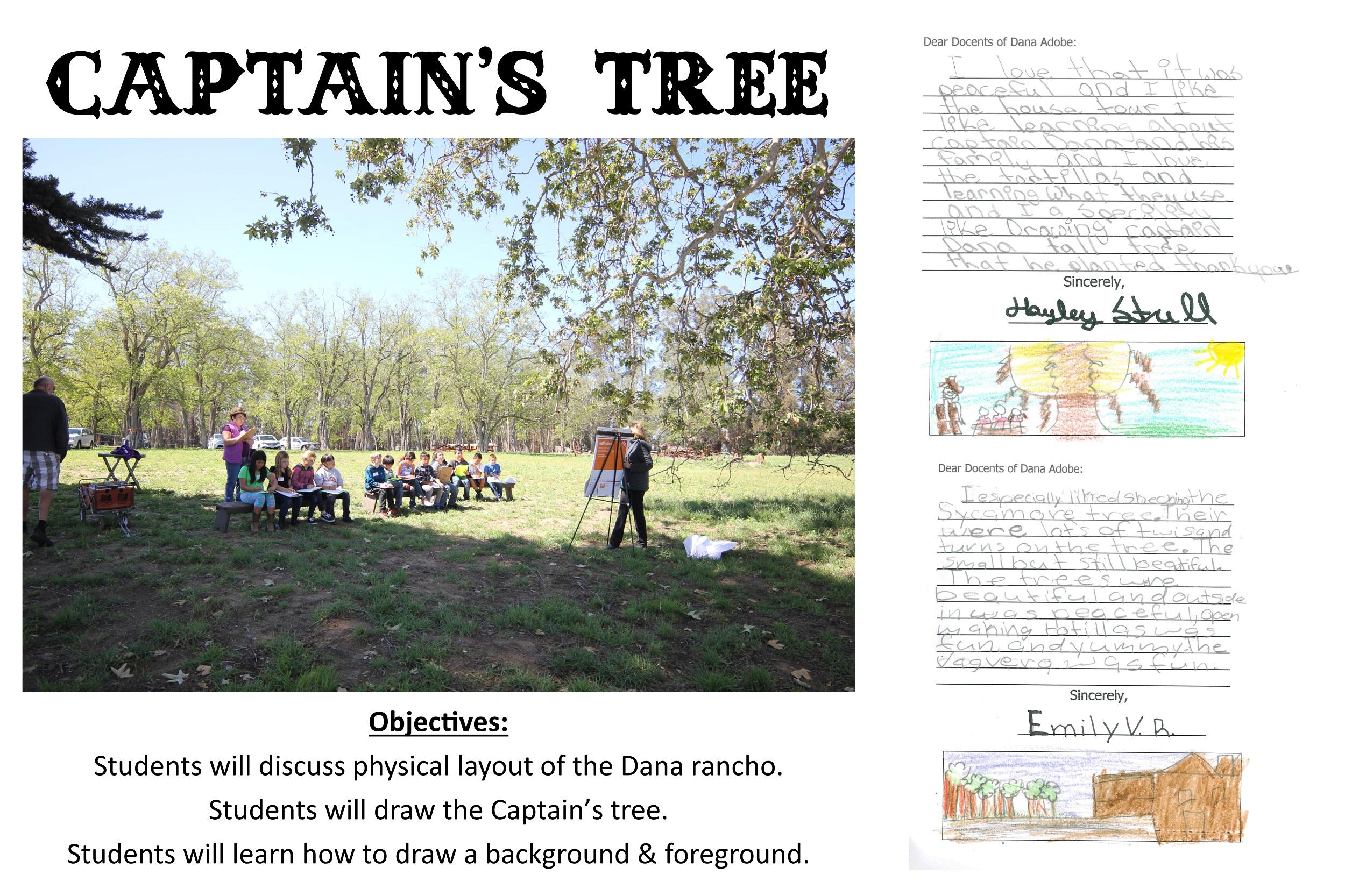 Captain's Tree